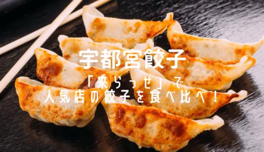 【宇都宮餃子】「来らっせ」で人気店の餃子を食べ比べ!MEGAドン・キホーテに行ってみよう